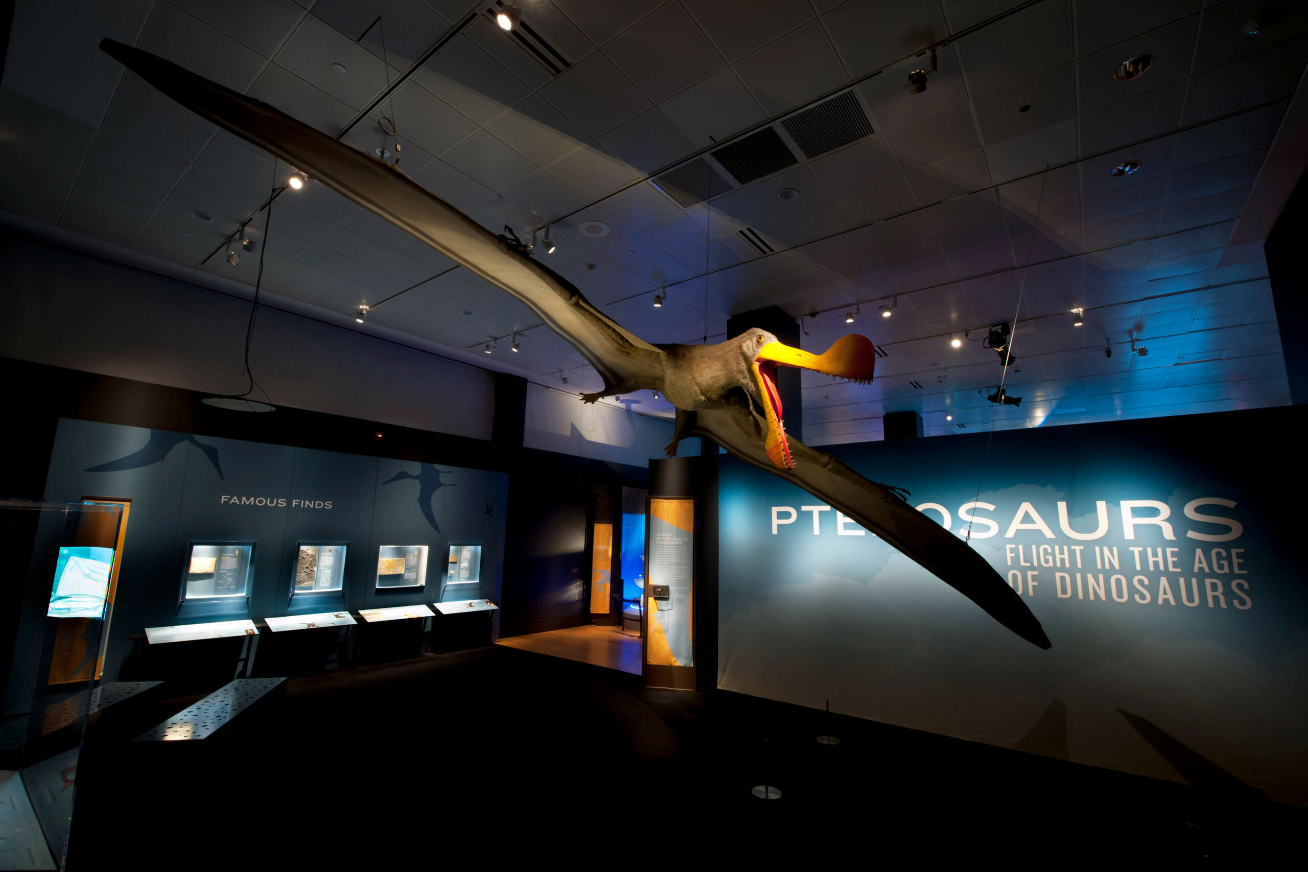frost science Pterosaurs entrance